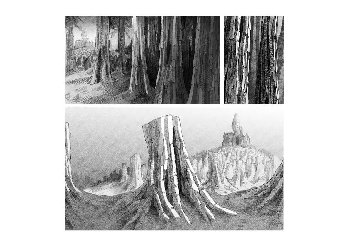 bois-foret-arbres