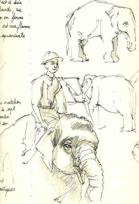 voyages-thailande-dresseur-elephantsl